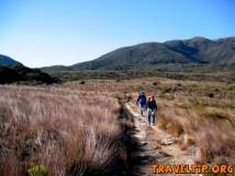 New Zealand - West Coast - The Heaphy Track